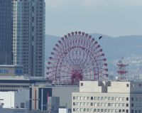 6900470-View_from_Osaka_Castle_Osaka.jpg