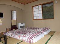 6941697-Riverside_setting_Nikko.jpg