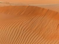 Dunes at sunset, Wahiba Sands
