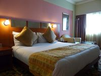 7516459-Our_room_Delhi.jpg