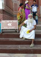 7524333-Taj_Mahal_visiting_information_Agra.jpg