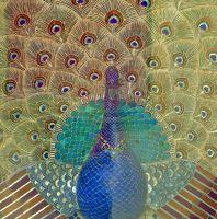 7553582-Peacock_mosaic_Udaipur.jpg