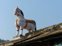7554326-An_elephant_and_a_horse_Bundi.jpg