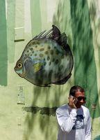 7650756-Graffiti_street_art.jpg