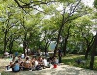 Picnicking in Moranbong Park on National Day