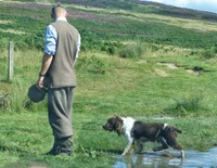 Grouse shoot beater and dog, Lordenshaw