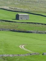 Barn above Swaledale