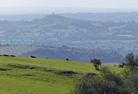 View of the Somerset Levels and Glastonbury Tor from Deerleap