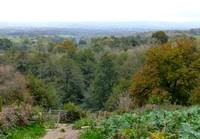 View from Emmetts Garden