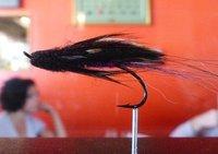 Fishing fly on display, Steelhead Diner