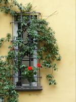 Home of St Gemma Galgani, Lucca