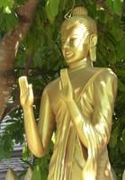 Gold Buddha, Wat Choum Khong