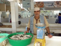 In the fish market, Salalah