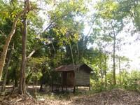 Spirit house, Wat Tomo