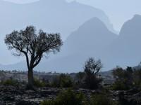 At the Wadi Nakhal vista point