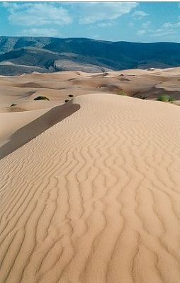 dunes at the back of the hotel - Ain Sefra