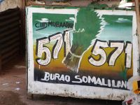 several qat stalls in town - Burao