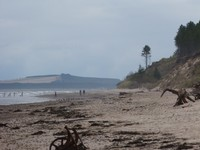 Culbin Shore