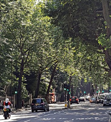 Holland Park Avenue