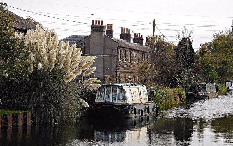 Southern part of Government Row River Lee Navigation