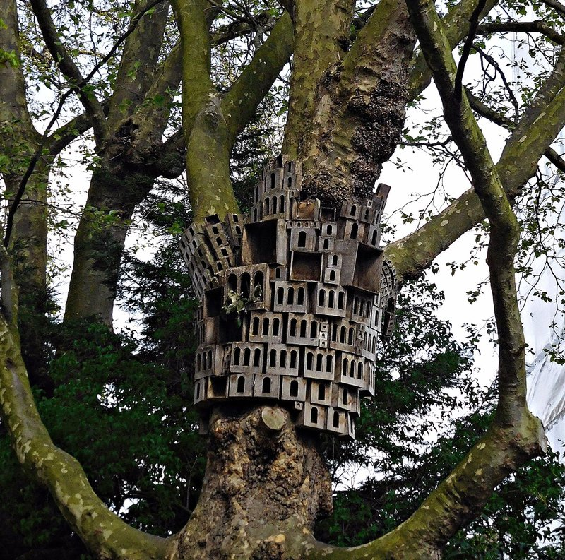 "Tree sculpture near St James Church. ""Spontaneous City"""