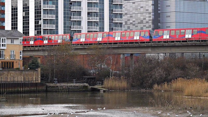 East India Docks Basin:  Birds and DLR train