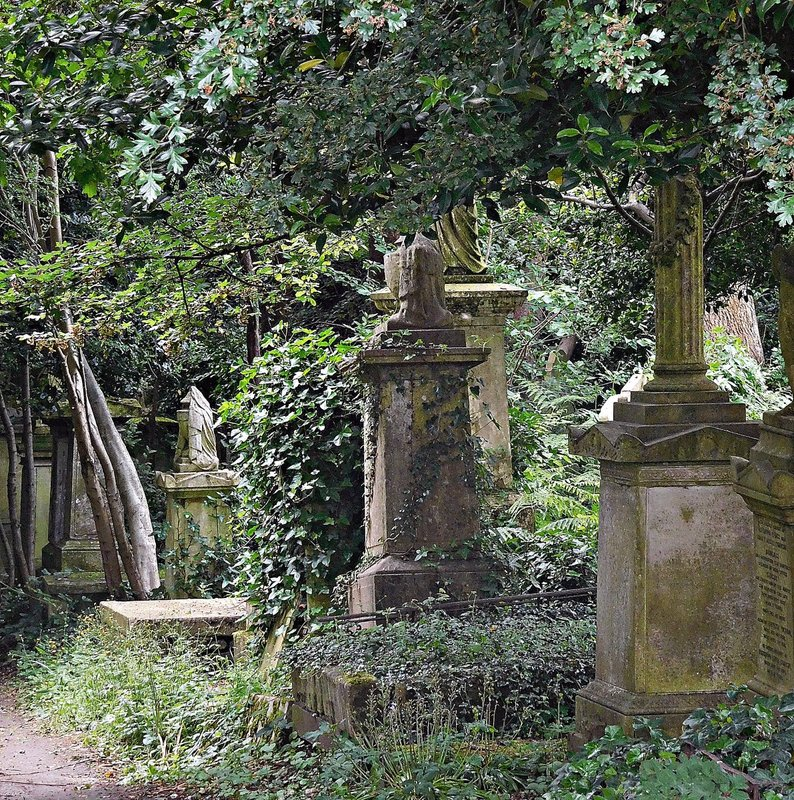 Glimpse of western part of Highgate Cemetery from Swains Lane
