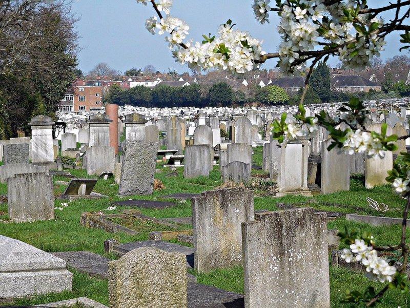JEWISH CEMETERY Ashkenazi graves