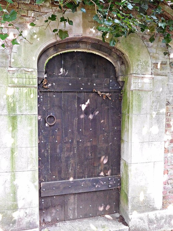 HOOP 34 WILD HATCH old garden door
