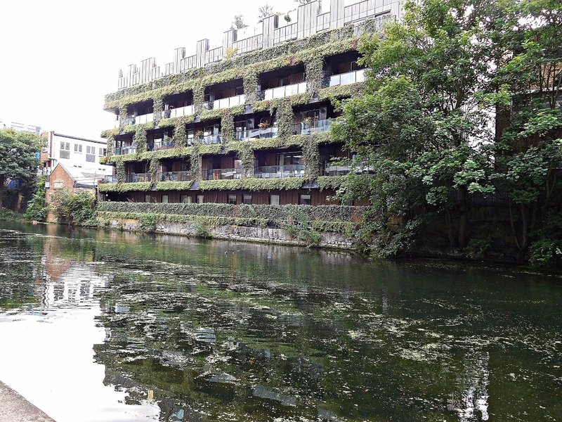 Plant covered building Regents Canal