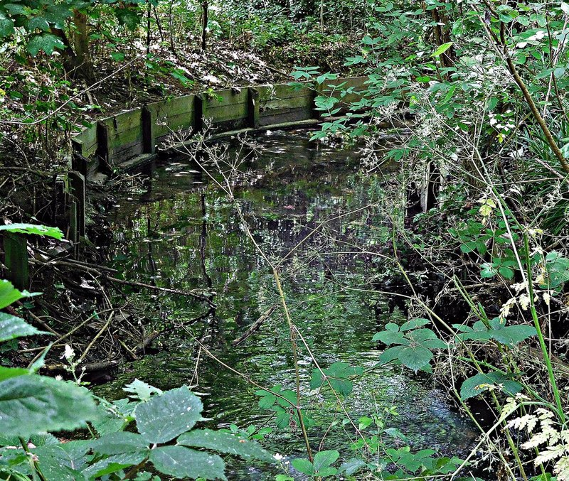 Brook near east side of Finchley Road
