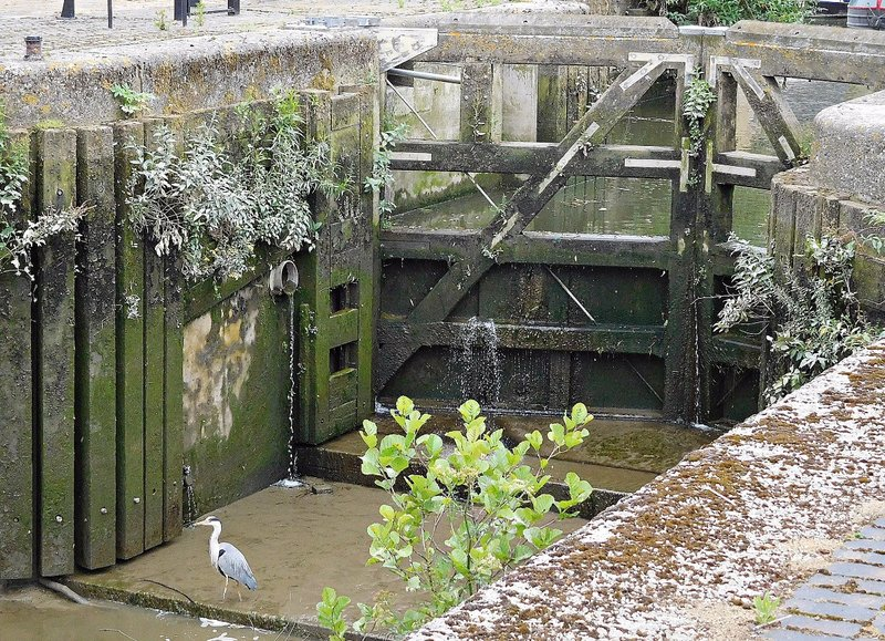 Lock Gates at Thames Soapworks creek