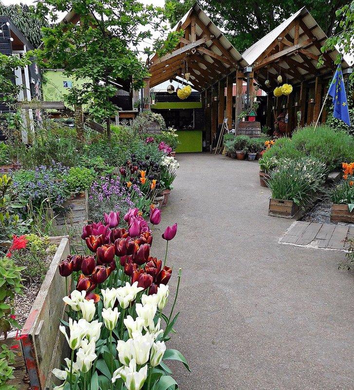 Dalston Curve Garden - view of refreshment area