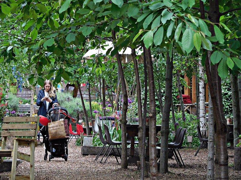Dalston Curve Garden