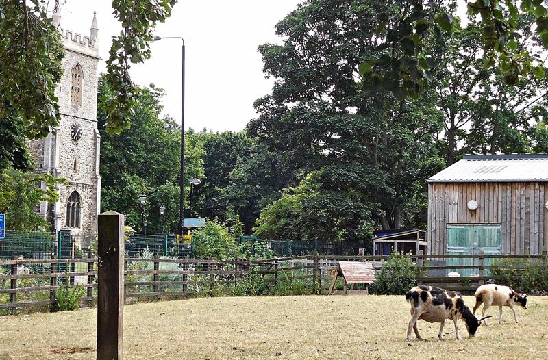 Stepney City Farm and St Dunstans Church