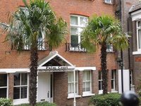 Palm Court Fitzjohns Ave