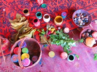 Dyes made from native plants