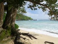 Grand Anse Beach, Mahé island, Seychelles (photo 145)