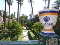 aalcazar1