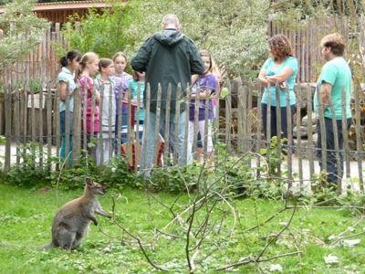191193235105101-A_zoo_school.._der_Pfalz.jpg