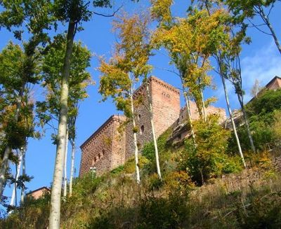 3950522-Hiking_up_to_Trifels_Castle.jpg