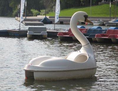 4587622-Aasee_the_swan_boat_Muenster.jpg