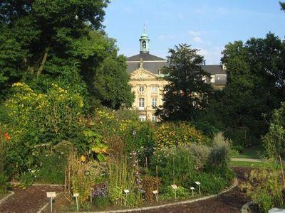 4587756-Botanical_garden_and_Schloss_Muenster.jpg