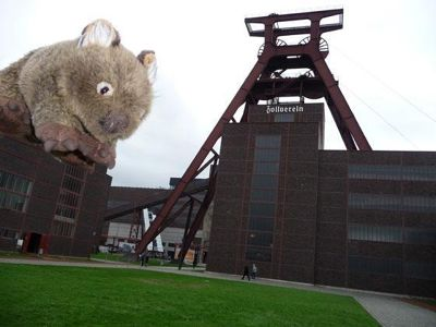 4904964-King_Kong_at_Zollverein_Essen.jpg