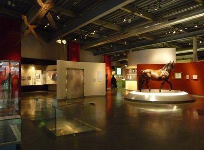 4912236-Horse_Museum_Muenster.jpg