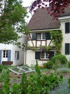 6201090-Little_Village_Gardens.jpg