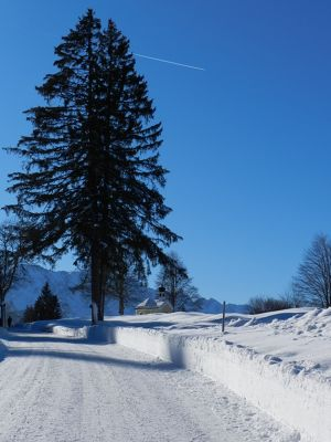 725168646771523-The_Hike_fro..Mittenwald.jpg