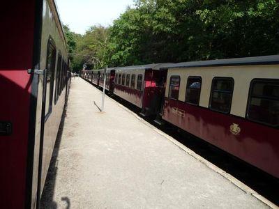 754524184581176-Trains_in_bo..iligendamm.jpg