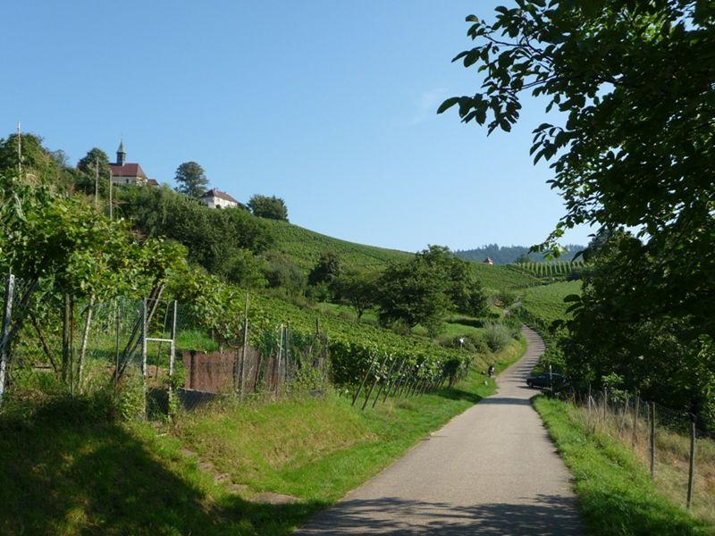 large_153062666755966-Walk_Up_Berg..Gengenbach.jpg