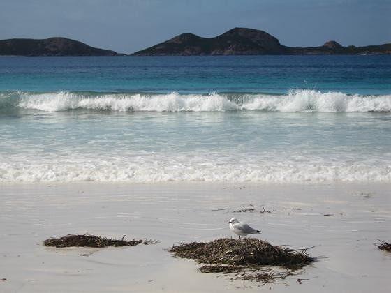 Lucky Bay: Australia's Whitest Beach